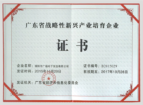 Guangdong  province strategic new industry cultivation enterprise certificate